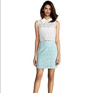 Donna Morgan - Color block lace dress with collar